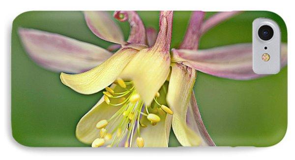 Yellow Aquilegia Bloom Phone Case by Heiko Koehrer-Wagner