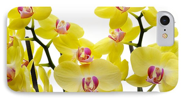 Yellow Beauties IPhone Case