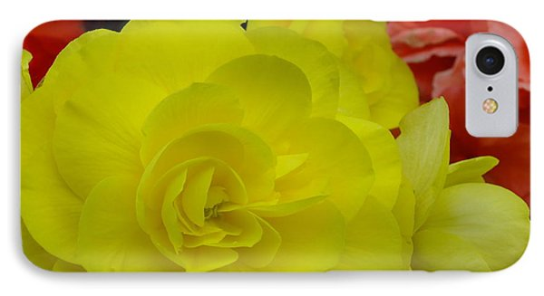 IPhone Case featuring the photograph Yellow Begonia by Gene Cyr