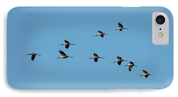 Yellow-billed Storks In V Formation IPhone Case by Tony Camacho