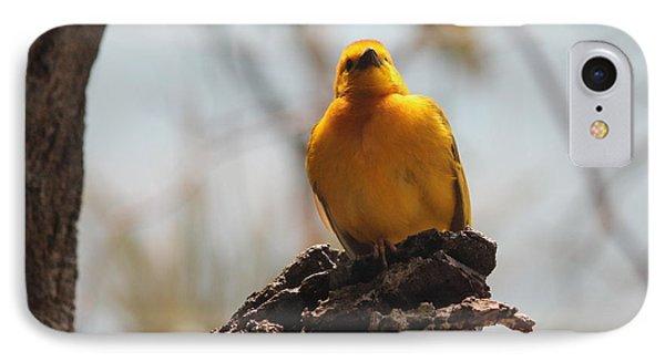 Yellow Bird In Trees IPhone Case