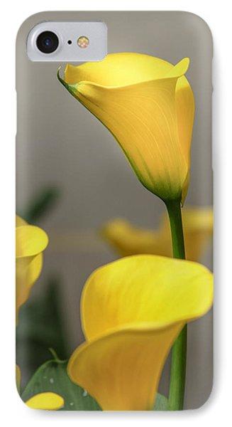 Yellow Calla Lilies IPhone Case by Menachem Ganon