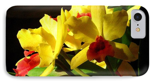 Yellow Cattleya Orchid Phone Case by Alfred Ng