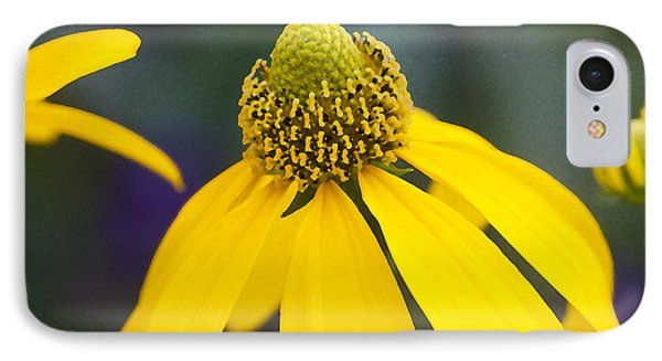 Yellow Cone Flower Rudbeckia Phone Case by Rich Franco