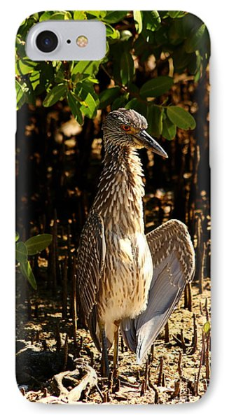 Yellow Crowned Night Heron Baby In The Mangroves IPhone Case by Christiane Schulze Art And Photography