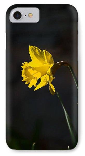 Yellow Daffodil IPhone Case