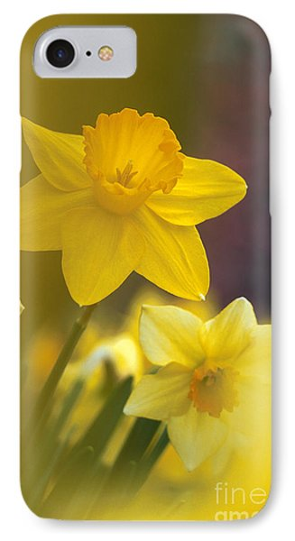 IPhone Case featuring the photograph Yellow Daffodils  by Chris Scroggins