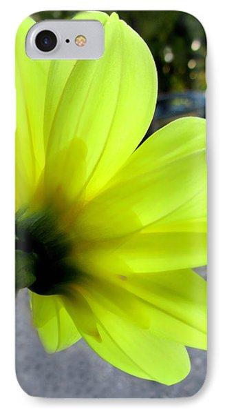 Yellow Dahlia Bloom Phone Case by Danielle  Parent