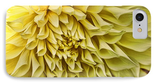 Yellow Dahlia IPhone Case by Laurinda Bowling