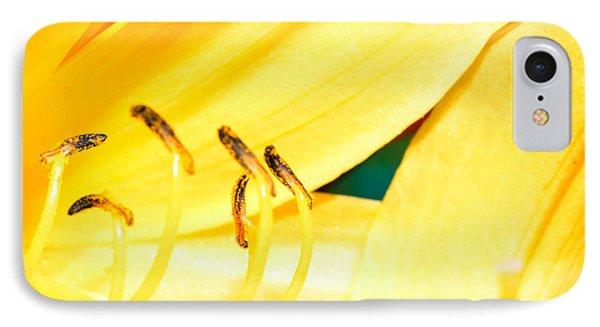 Yellow Daisy Flower IPhone Case