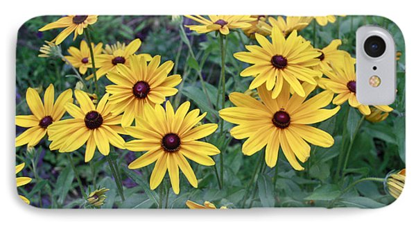 Yellow Daisy Flowers #3 IPhone Case