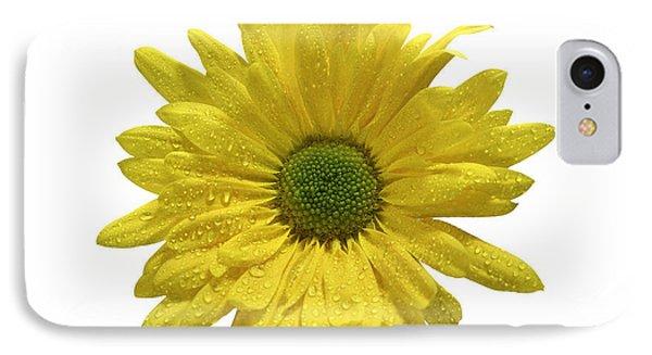 Yellow Daisy  Phone Case by Mauro Celotti