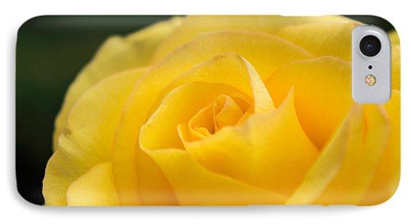 Yellow Delight Phone Case by Arlene Carmel