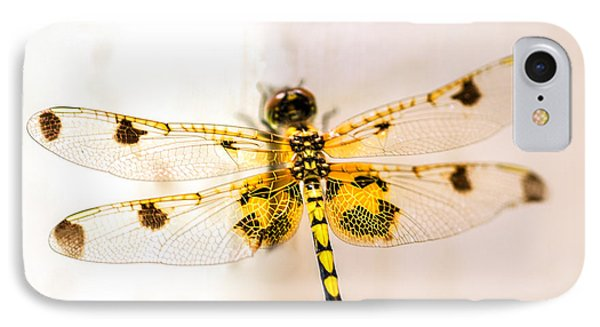 Yellow Dragonfly Pantala Flavescens IPhone Case by Iris Richardson