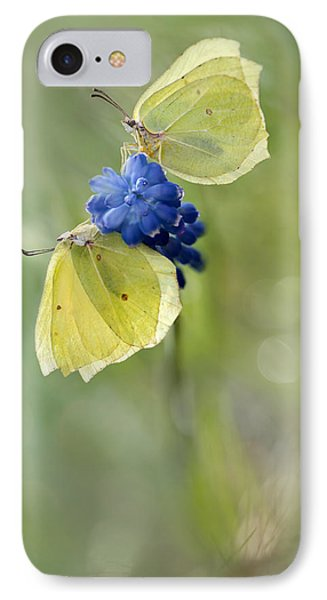 Yellow Duet IPhone Case by Jaroslaw Blaminsky