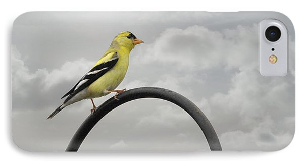 Yellow Finch A Bright Spot Of Color Phone Case by Christine Till