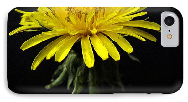 IPhone Case featuring the photograph Yellow Flower by Dorin Adrian Berbier