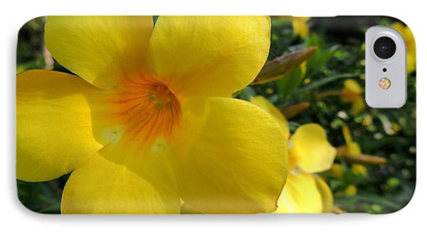 IPhone Case featuring the photograph Yellow Flower by Kristine Merc