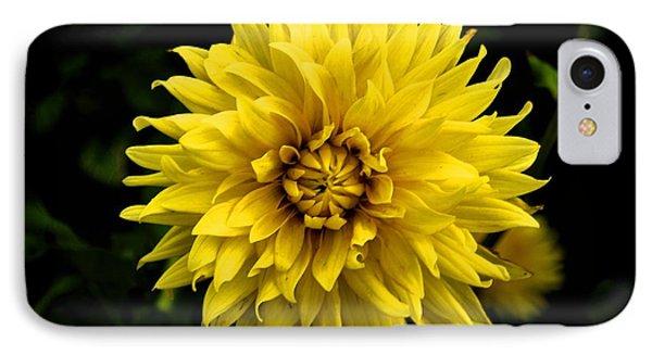 Yellow Flower IPhone Case by Matt Harang