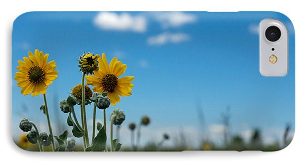 Yellow Flower On Blue Sky IPhone Case