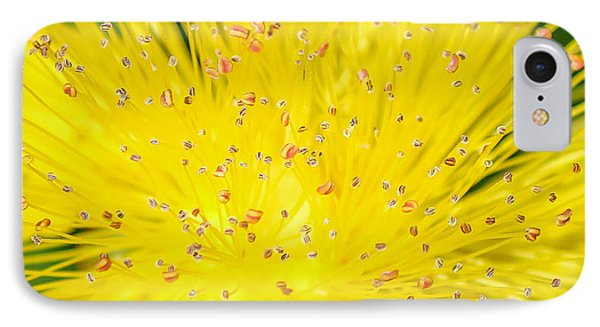 IPhone Case featuring the photograph Yellow Flower  by Trace Kittrell