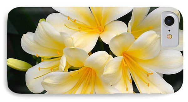 IPhone Case featuring the photograph Clivia Yellow Flowers by Jeannie Rhode