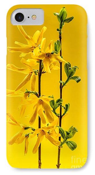 Yellow Forsythia Flowers IPhone Case