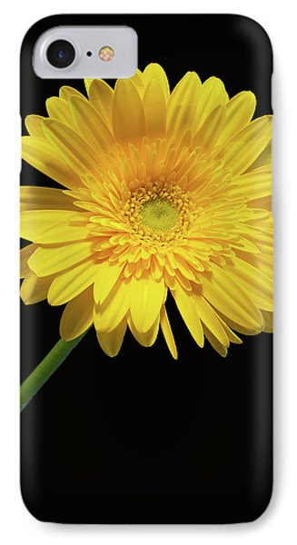 Yellow Gerber Daisy Phone Case by Joan Powell