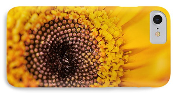 Yellow Gerbera Squared IPhone Case by TK Goforth