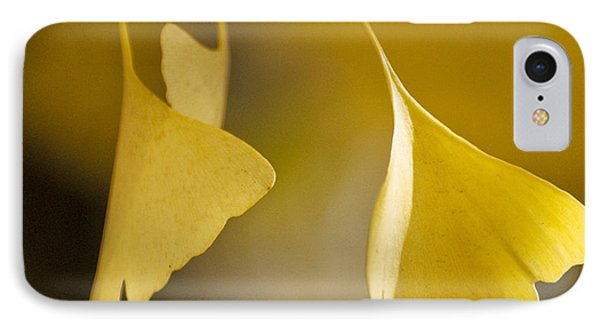 Yellow Ginkgo IPhone Case by Sally Ross