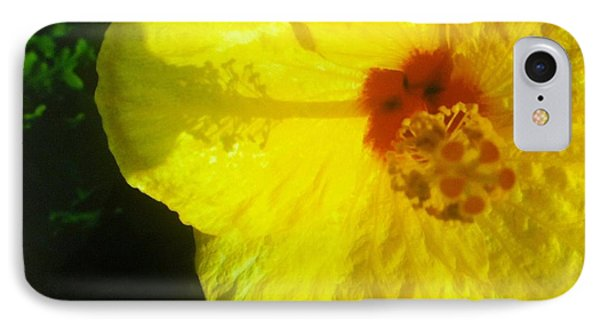 IPhone Case featuring the photograph Yellow Hibiscus by Alohi Fujimoto