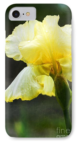 Yellow Iris IPhone Case by Lee Craig