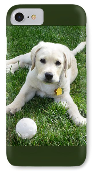 Yellow Lab Puppy Got A Ball IPhone Case by Irina Sztukowski