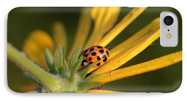 IPhone Case featuring the photograph Yellow Lady - 2 by Kenny Glotfelty