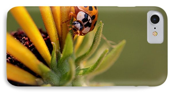 IPhone Case featuring the photograph Yellow Lady - 4 by Kenny Glotfelty