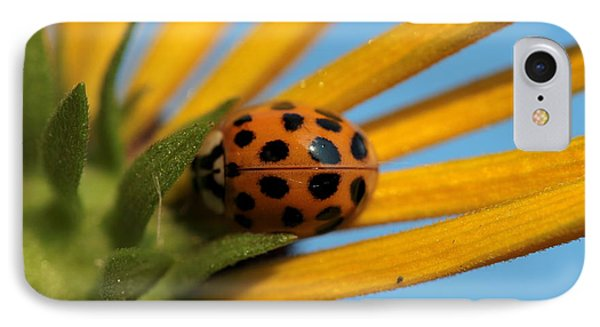 IPhone Case featuring the photograph Yellow Lady Bug - 5 by Kenny Glotfelty