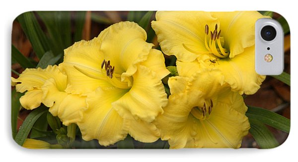 IPhone Case featuring the photograph Yellow Lillies by Donald Williams
