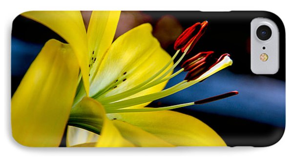 Yellow Lily Anthers Phone Case by Robert Bales