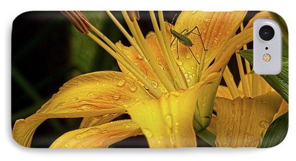 IPhone Case featuring the photograph Yellow Lily With Bug by Michael Flood