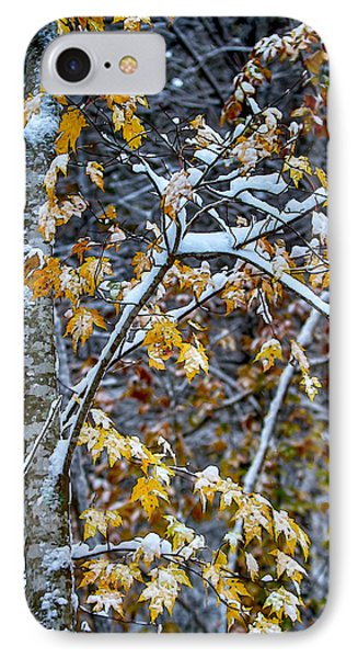 Yellow Maple And Snow IPhone Case