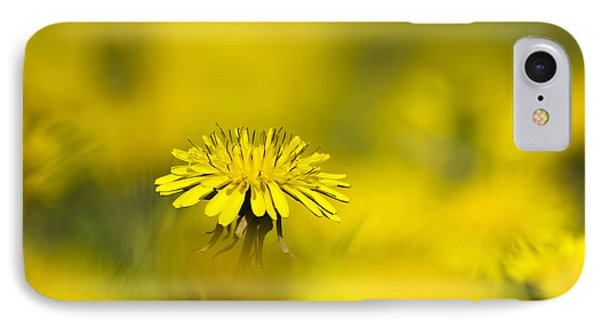 Yellow On Yellow Dandelion Phone Case by Christina Rollo