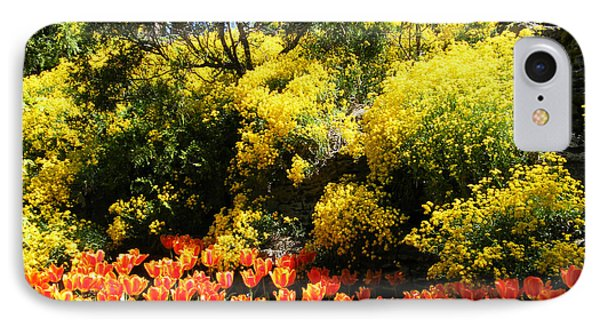 Yellow Orange - Springtime IPhone Case by Phil Banks