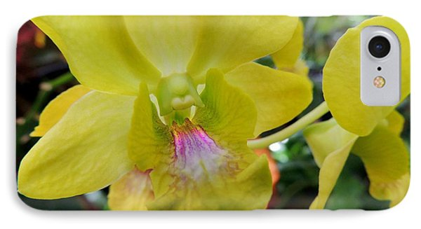 IPhone Case featuring the photograph Yellow Orchid by Kristine Merc