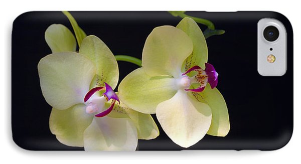 Yellow Orchids IPhone Case by Michelle Wiarda