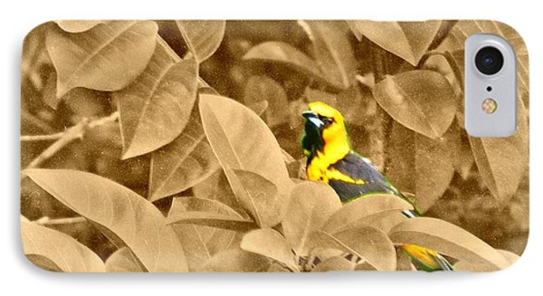 Yellow Oriole IPhone Case