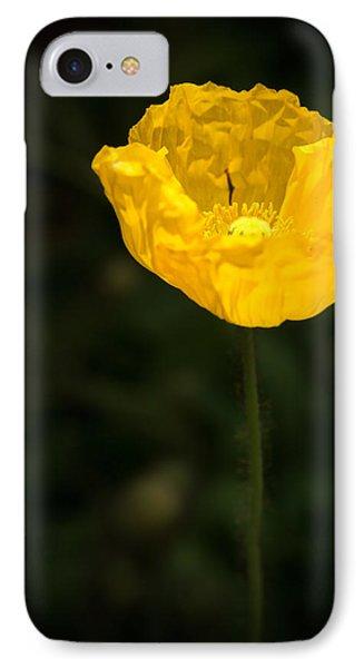 Yellow Poppy Phone Case by  Onyonet  Photo Studios