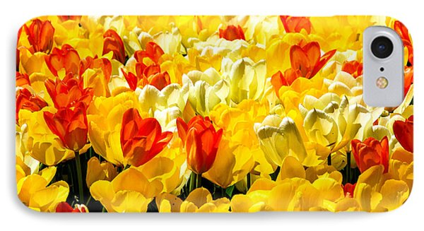 Yellow Red And White Tulips IPhone Case by Menachem Ganon