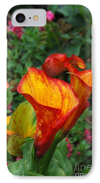 IPhone Case featuring the photograph Yellow Red Calla Lily by Eva Kaufman