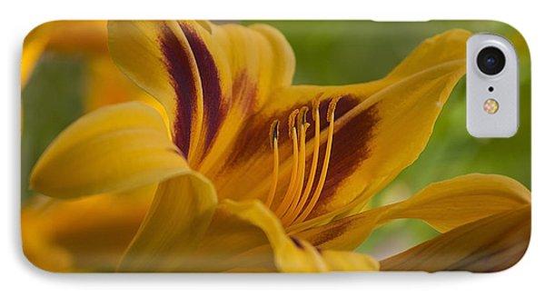 Yellow Rising Phone Case by Matthew Blum