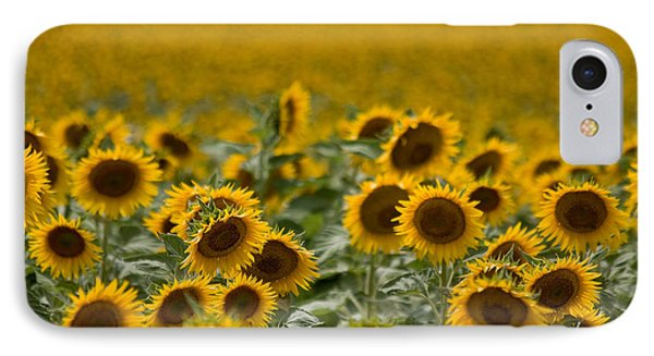 IPhone Case featuring the photograph Yellow by Ronda Kimbrow